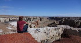 Reisen während eines Schüleraustausches in den USA